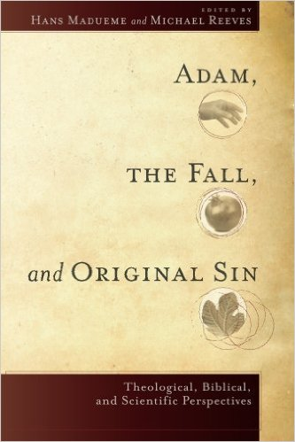 madueme_adam-fall-original-sin_cover